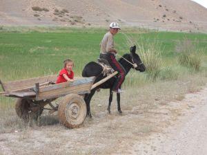 donkey pulling a cart