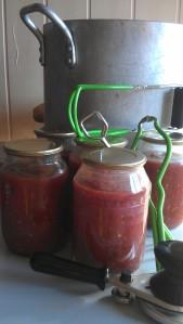 teh finished jars of salsa